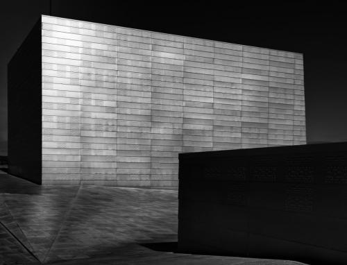 Monolith 23.5 HM SPP Patrick Mohide  Pictorial Silver