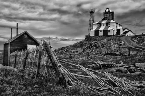 Bonavista In Black And White 9 8 8 25 TC GPP Greg Alderson  Pictorial Gold