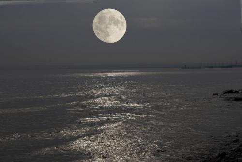 Glowing Moon 6.5 7 7 20.5 Elzbieta Piskorz  Pictorial Gold