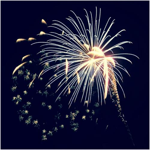 Fireworks Burst 6.5 7 6.5 20 Ian Porszt  Pictorial Gold