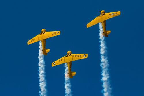 Harvard Aircraft 8.5 8 9 25.5 TC GPP Geoffrey Skirrow  Pictorial Gold