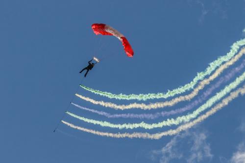 Parachutist 7.5 7.5 7 22 Jim Thomson  Pictorial Gold