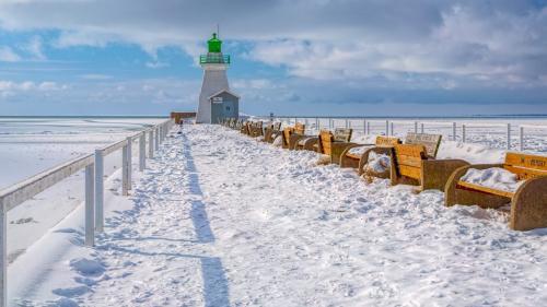 Port Dover Pier Frozen 8 7.5 7 22.5 Geoff Dunn  Pictorial Gold