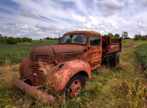 Rusting Away  8 7 7.5 22.5 Dan Copeland  Pictorial Master