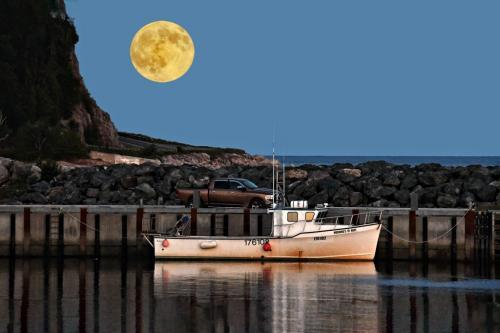 Harbour Moon 7 6 7 20 Greg Alderson  Pictorial Gold