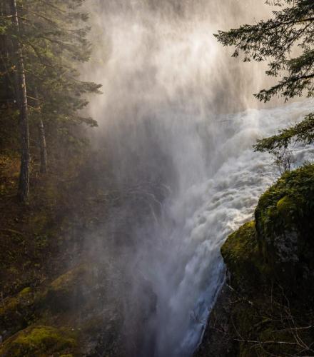 Englishman River Falls 7.5 7.5 9 24 GPP David Evans  Pictorial Gold
