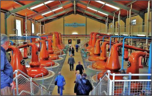 Glenfiddich Still Floor 7 7.5 6.5 21 James Hamilton  Pictorial Gold