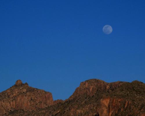 Moonrise 6.5 7 7 20.5 Ian Porszt  Pictorial Gold