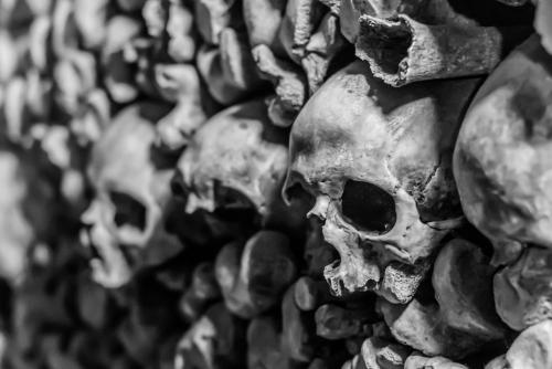 Paris Catacombs 7 6.5 7 20.5 Kathy Leisti  Pictorial Gold