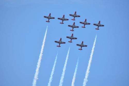 Perfect Formation - Red Arrows 6.5 7 7.5 21 BPP Loretta Monteleone  Pictorial Bronze