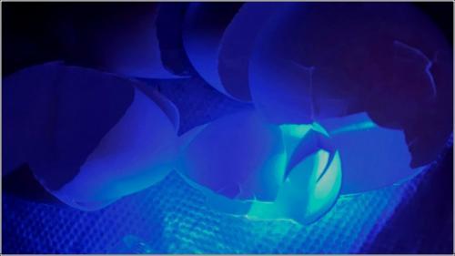 Abstract #15 6 6 7 19 John Bunyon  Creative Silver